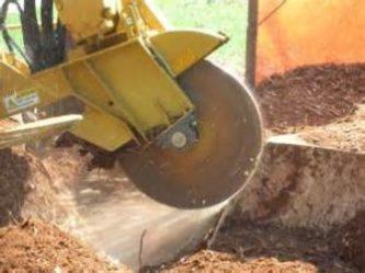 Stump Grinding huston's tree service